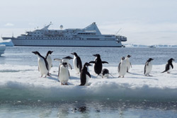 Compagnie du Ponant Cruise