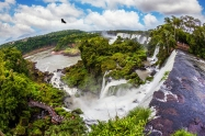 The black Andean condors are circling in the sky above the water. Waterfalls Iguazu on the Argentina. Picturesque basaltic ledges form the waterfalls. The concept of active and exotic tourism